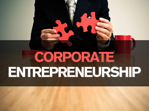 corporate entrepreneurship thesis The corporate entrepreneurship project serves as an active learning arena for this course the course on methods and topics in entrepreneurship research covers qualitative and quantitative research methods and relevant topics in entrepreneurial research.